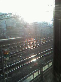 う〜、朝の太陽の眩しいこと!