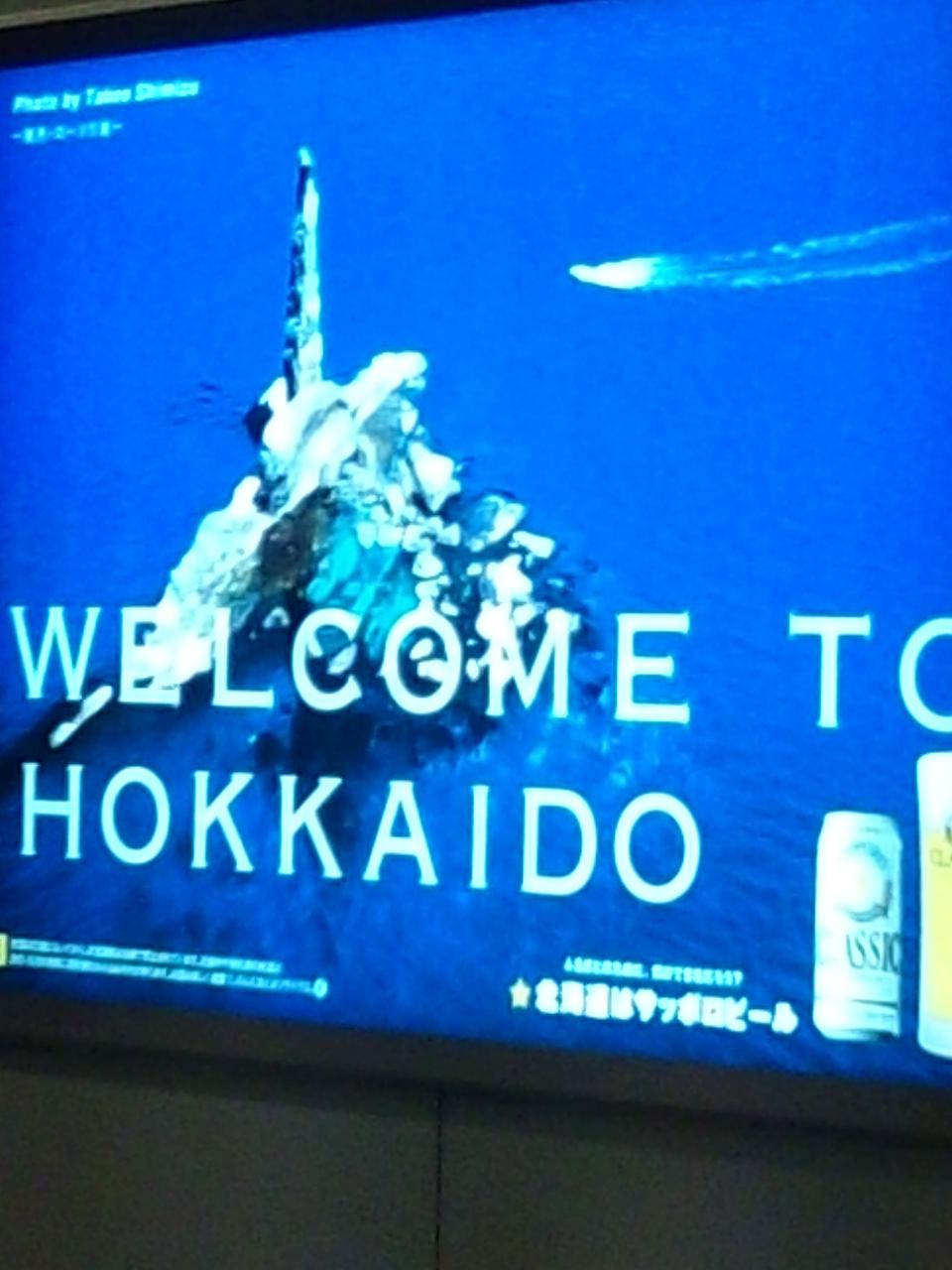北海道に来ています。